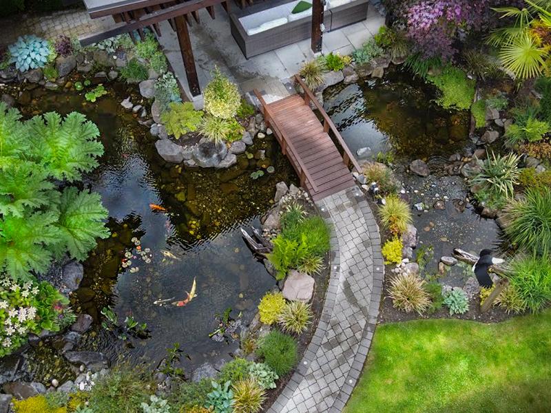 Pond Builders Vancouver